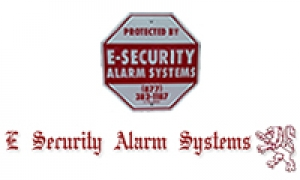 E. Security Alarm Systems
