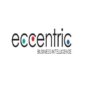Eccentric Business Intelligence Inc.