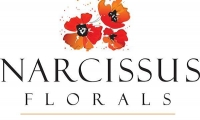 ACCENTS BY NARCISSUS FLORALS