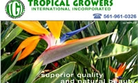 Tropical Growers International, Inc.