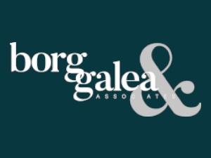 Borg Galea Limited