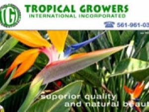 Tropical Growers International, Inc.