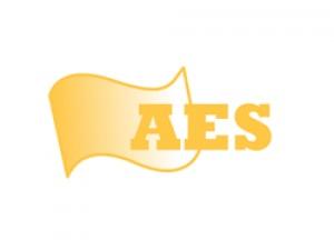 American Efficiency Services (AES)