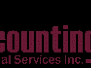 Accounting Plus Financial Services Inc.