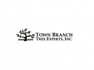 Town Branch Tree Experts, Inc.